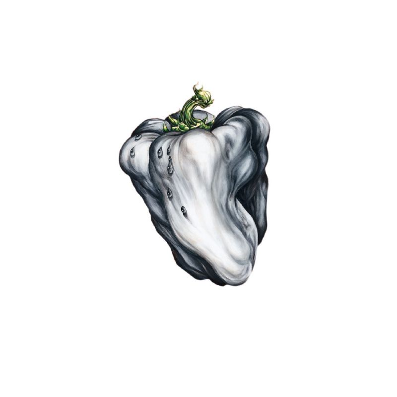 Ween - 'White Pepper' album cover