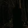 Gaspar Noe's Nick Cave & The Bad Seeds video