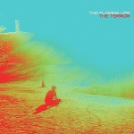 The Flaming Lips - 'The Terror'
