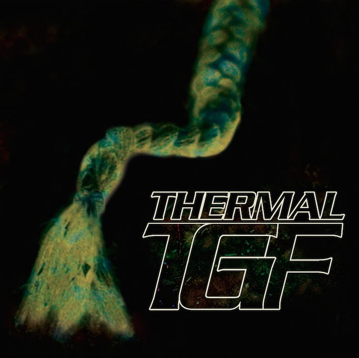 teengirl-fantasy-thermal copy