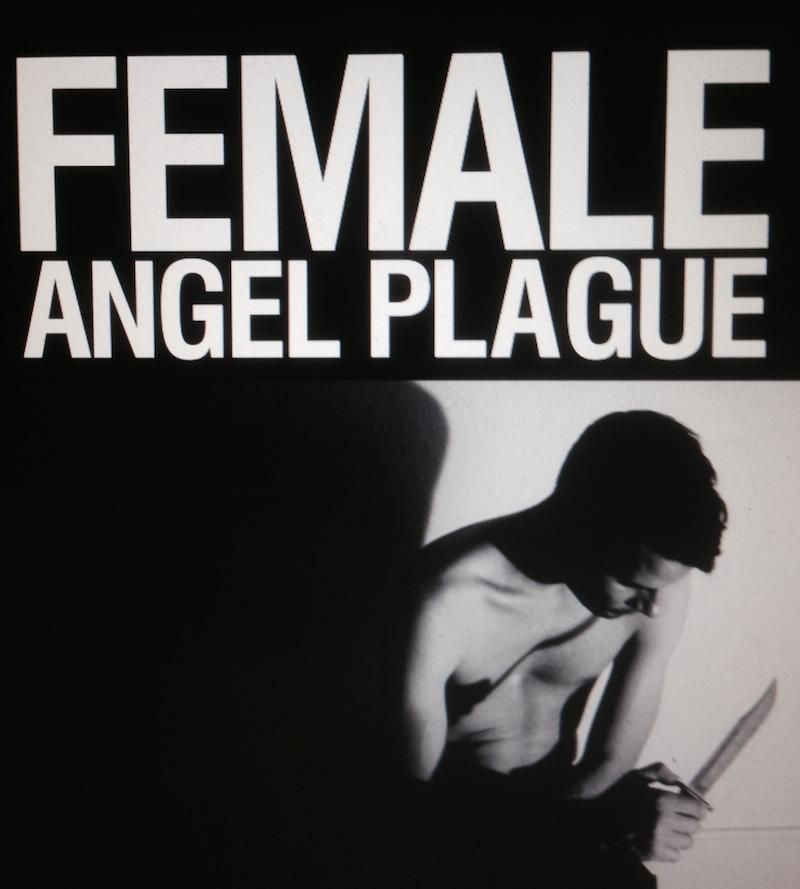 Female - 'Angel Plague' album cover