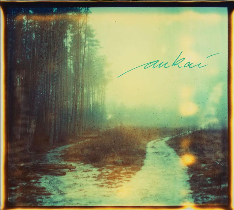 'Aukai' album art