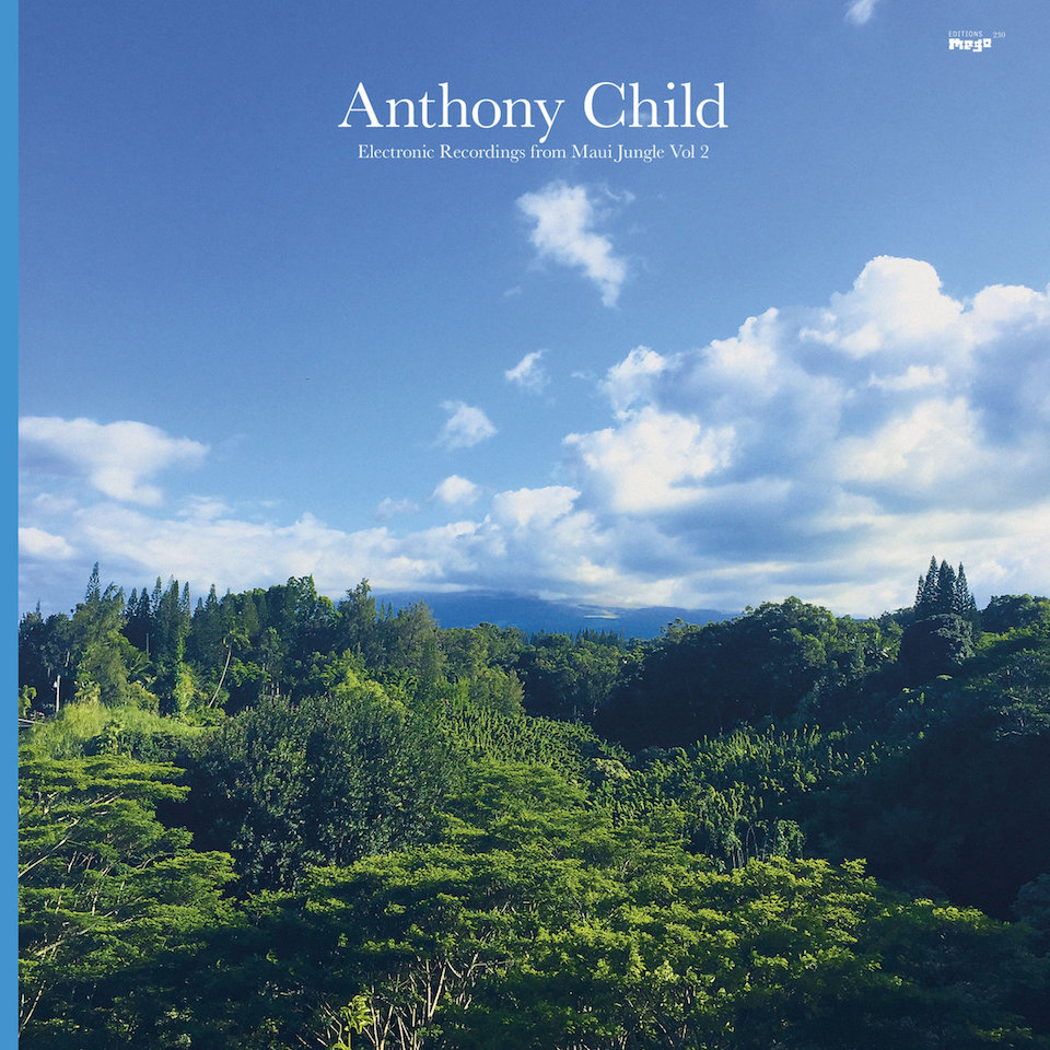 Anthony Child -  'Electronic Recordings from Maui Jungle Vol. 2' album cover