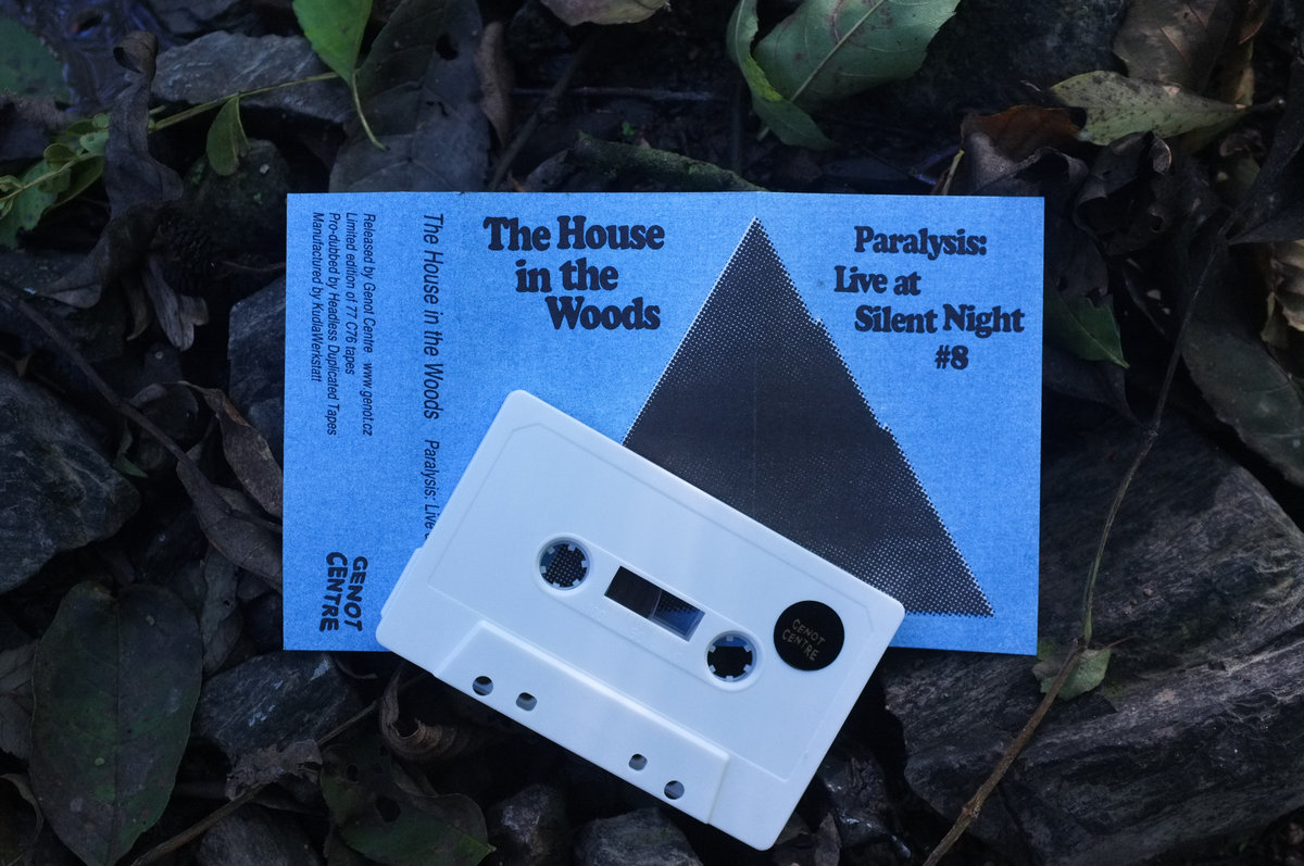 Pye Corner Audio as The House in the Woods | Paralysis tape