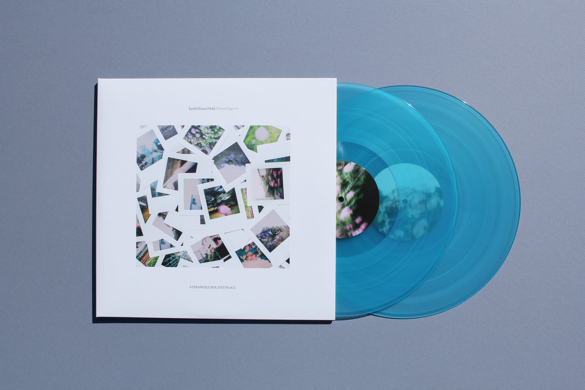 Earth House Hold | Never Forget Us vinyl