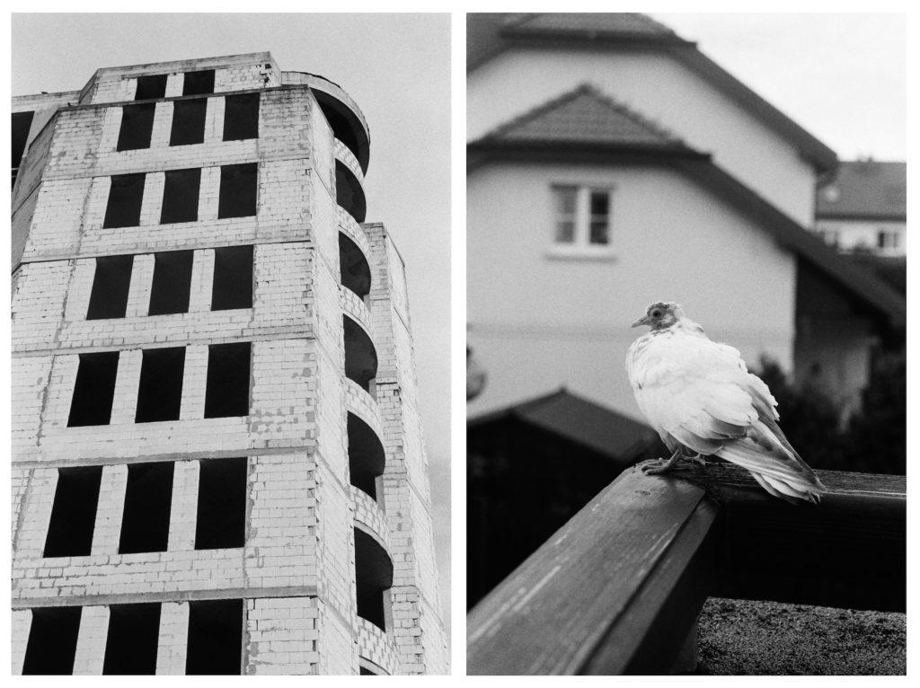 Tess Roby photo essay