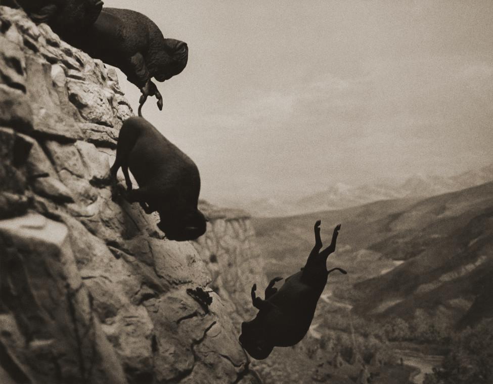 David Wojnarowicz Untitled (Buffaloes)